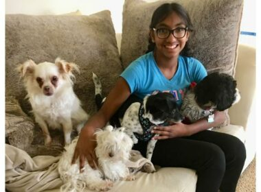 14-year-old helps senior dogs get adopted
