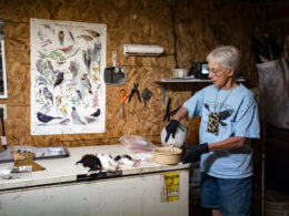 Susan Ahalt - Wyoming's Bird Lady