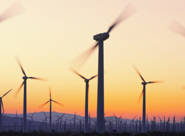 Renewable Energy Hits Record Growth in 2020