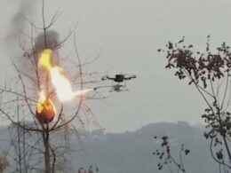 Chinese Village Raise Funds for Flame-Throwing Drone after being Invaded by Many Deadly Wasps