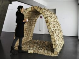 Designer Making Building Bricks out of Strong Mushroom
