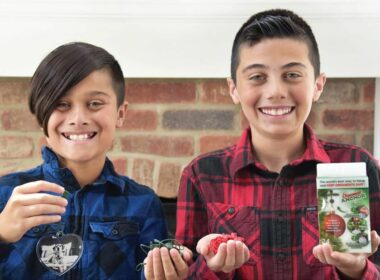 Two 12-year-old Boys Earned $250,000 during the pandemic and have decided to give back to local animal shelters