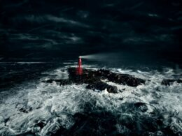Göteborg Film Festival Needs Someone to Spend a Whole Week all Alone in Remote Lighthouse Watching Movies