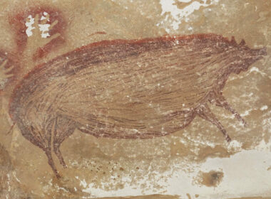 Oldest known cave painting