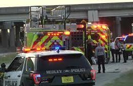 Good Samaritan Saves Woman From Sinking Vehicle In Miami-Dade Canal
