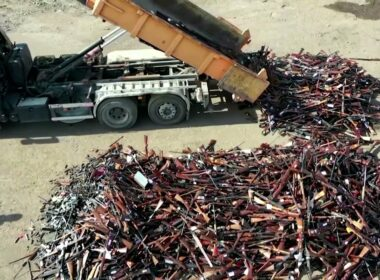 Over 22000 firearms