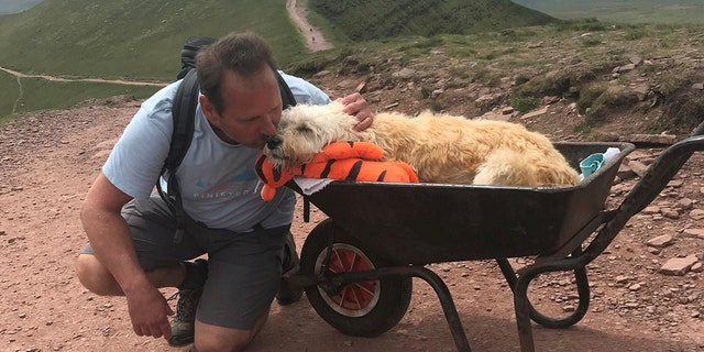 Man Takes Monty, His Dying Dog for One Last Walk in a Wheelbarrow